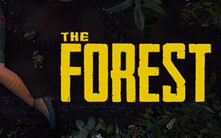 【虚】教大家如何在弱肉强食的森林活下去(大概吧)——森林